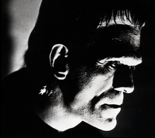 pursuit of knowledge bladerunner and frankenstein blade runner, like frankenstein, is a hybrid text, blending the science-fiction and hard-boiled detective genres to create what has been referred to as tech noir both genres have their roots in the western genre, which features a lone individual - a flawed but heroic outsider with a strong moral.